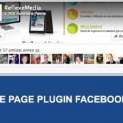 Page-Plugin-Facebook-Reflexemedia